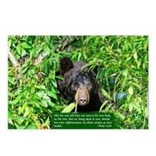 Black Bear - 1 Peter 2:24 Postcards (Package of 8)