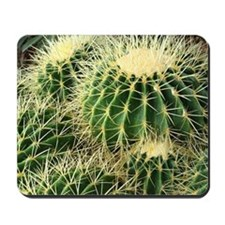 Barrel cactus mousepad - color