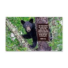 Baby Bear - John 3:16 Car Magnet 20 x 12