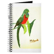 QUETZAL BIRD Journal