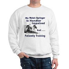 Welsh Springer Spaniel Agilit Sweatshirt