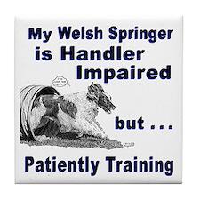 Welsh Springer Spaniel Agilit Tile Coaster