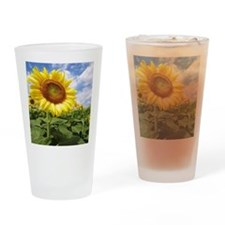 Sunflower Garden Drinking Glass