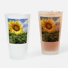 Sunflower Garden Drinking Glass