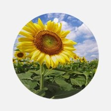 Sunflower Garden Ornament (Round)