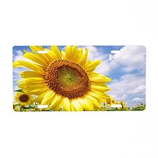 Sunflower Garden Aluminum License Plate