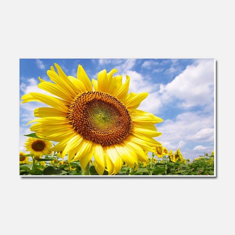 Sunflower Garden Car Magnet 20 x 12