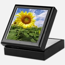 Sunflower Garden Keepsake Box
