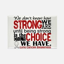 Lung Cancer HowStrongWe Rectangle Magnet (10 pack)