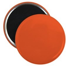 Persimmon Orange Solid Color Magnets