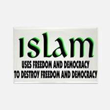 Using Democracy Rectangle Magnet (10 pack)