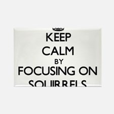 Keep Calm by focusing on Squirrels Magnets