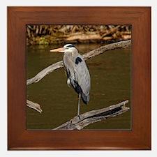 GREAT BLUE HERON Framed Tile