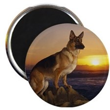 german shepherd Magnets