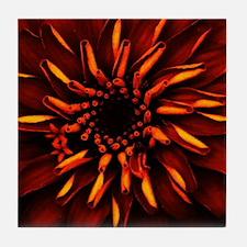 Orange Red Flower Glow Tile Coaster