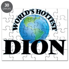 World's hottest Dion Puzzle