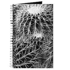 Barrel cactus journal - B&W