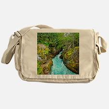 Unique Gregory Messenger Bag