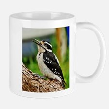 Hairy Woodpecker Mugs