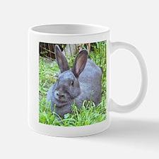 Silver's Small Mug