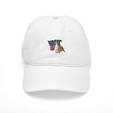 Iggy Flag Baseball Cap