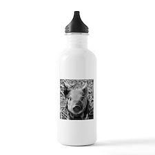 Sweet Piglet,black whi Water Bottle