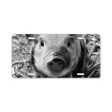 Sweet Piglet,black white Aluminum License Plate