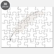 Quill Pen Puzzle