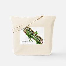 Banded Sphinx Moth Caterpillar Tote Bag