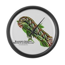 Banded Sphinx Moth Caterpillar Large Wall Clock