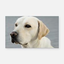 Labrador Dog Image Rectangle Car Magnet