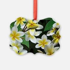 Plumeria Flowers Ornament