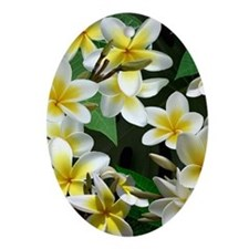 Plumeria Flowers Ornament (Oval)