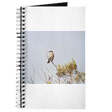 gentle breezes Journal