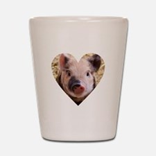 Cute Lucky pig Shot Glass