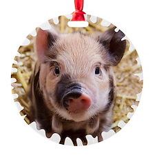 Sweet piglet,white mask Ornament