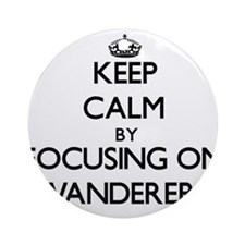 Keep Calm by focusing on Wanderer Ornament (Round)