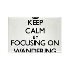 Keep Calm by focusing on Wandering Magnets