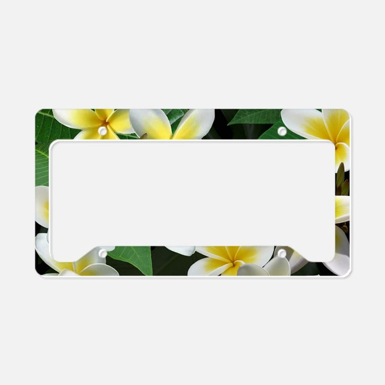 Decorative licence plate frames decorative license plate for Decoration plater