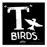 Birds Square Car Magnets