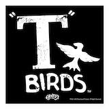 Birds Square Car Magnets