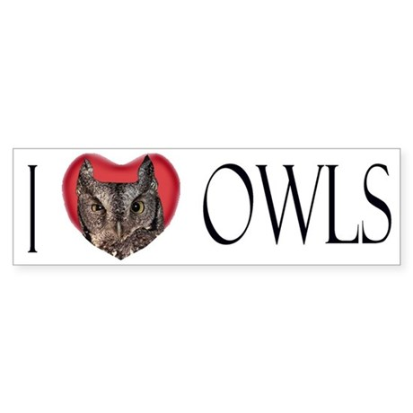 I Love Owls Bumber Sticker