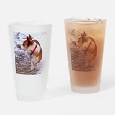 Honey Drinking Glass