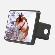 Honey Hitch Cover