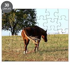 Kermit Puzzle