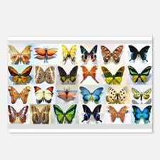 Bitterflies no text Postcards (Package of 8)