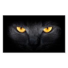 Cat Eyes Decal