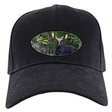 Majestic Bull Baseball Hat