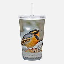 Cute Songbird Acrylic Double-wall Tumbler