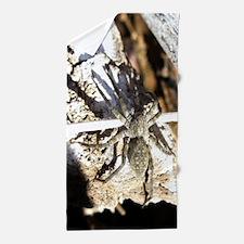Furry Wolf Spider on Rocks Beach Towel